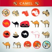 Link toCamel icons design vector