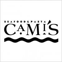 Link toCamis logo