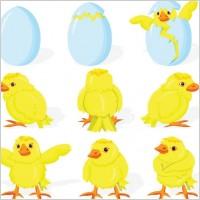Link toCartoon chicks break the shell 01 vector