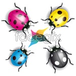 Link tovector coccinella Cartoon