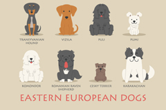 Link toCartoon dogs in eastern europe 12 design vector