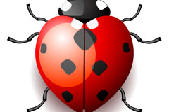 Link toCartoon ladybug vector
