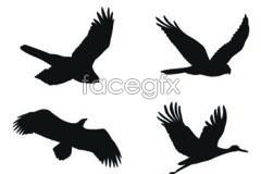 Link toset vector silhouette bird fine format Cdr