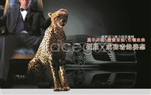 Link toCheetah car poster psd