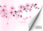 Link toCherry blossom background vector