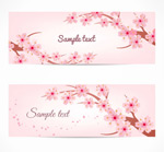 Link toCherry blossom banner vector