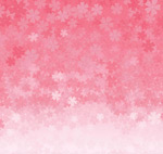 Link toCherry blossom floral seamless background vector