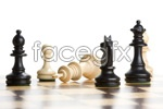 Link toChess pictures 4 psd