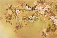Link toChinese plum high definition pictures