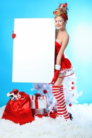 Link toChristmas beauty blank sign pictures