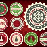 Link toChristmas snowflake pattern label 01 vector
