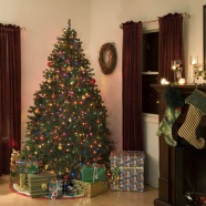 Link toChristmas tree decorating pictures download