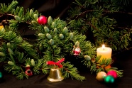 Link toChristmas tree jewelry picture download