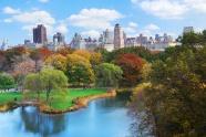 Link toCity park landscape picture