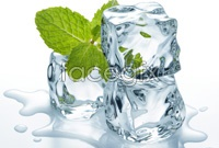 Link toClear ice and mint leaves hd photo