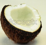 Link toCoconut psd