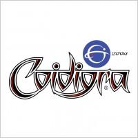 Link toCoidigra 2 logo