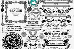 Link toCollection of european-style black lace vector