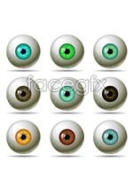 Link tovector design eyeball eye Color