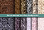 Link toColor zebra backgrounds vector