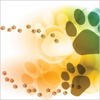 Link toColorful bubbles footprints background vector