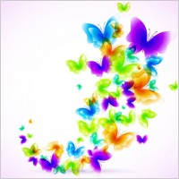 Link toColorful butterfly pattern 03 vector