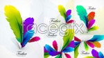 Link toColorful feathers vector