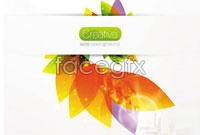 Link toColorful flower petals four vector