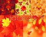 Link toColorful leaves background vector