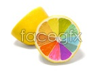 Link toColorful oranges psd