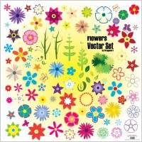 Link toColorful summer flowers
