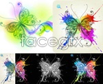 Link toCool colorful butterflies vector