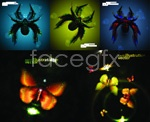 Link toCool spider and butterfly vector