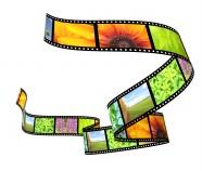Link toCreative album film picture download