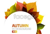 Link toCreative combination of autumn leaf graphic vector 1