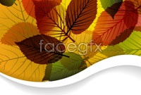 Link toCreative combination of autumn leaf graphic vector 3