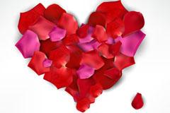 Link toCreative flower petals of love background vector