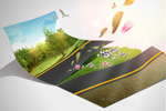 Link toCreative green picture 3 psd