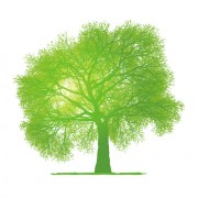 Link toCreative green tree design vector graphics 02 free