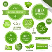 Link toCreative natural product stickers and labels vector 02 free