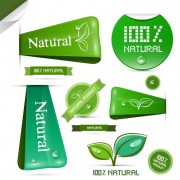 Link toCreative natural product stickers and labels vector 03 free