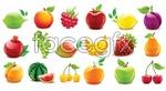 Crystal fruit vector