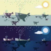 Cute cartoon whales vector graphics free