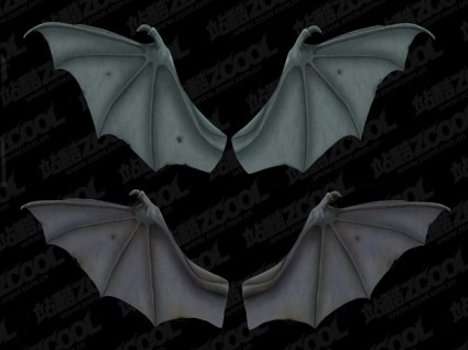 2 bat wings psd layered