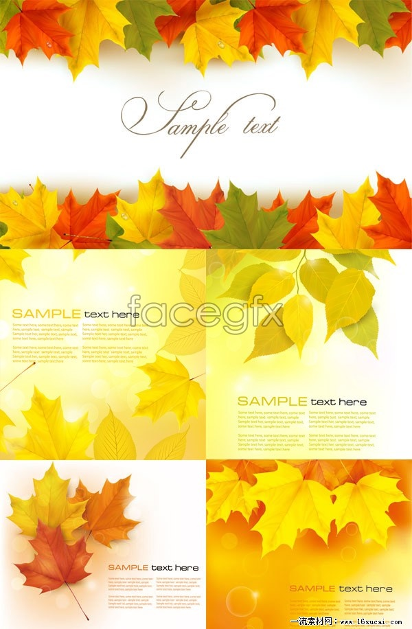 5 beautiful autumn leaves background vector graphic s