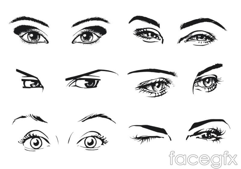 6 types of female eye vector over millions vectors stock photos 6 types of female eye vector free download 6 types toneelgroepblik Choice Image
