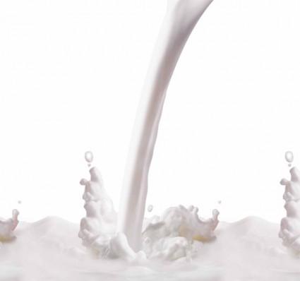 A splash of milk flower psd layered over millions vectors stock a splash of milk flower psd layered toneelgroepblik Images