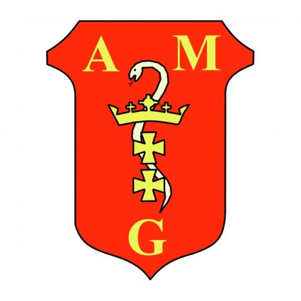 amg 2 logo