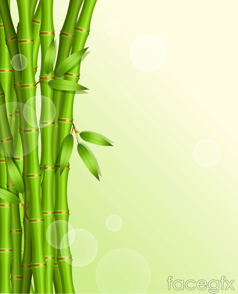 ppt template backgrounds bamboo