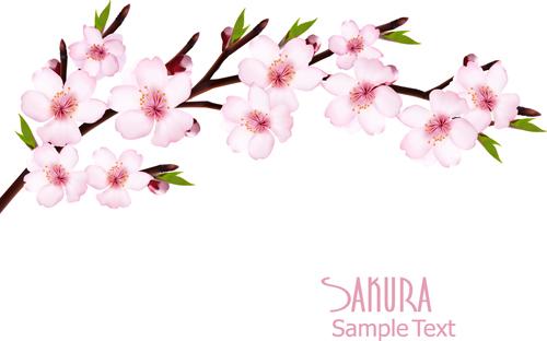 sakura powerpoint template